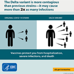 Delta Variant: What We Know About the Science