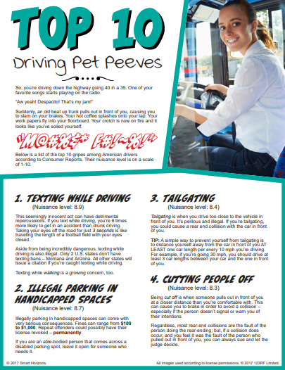 TOP 10 DRVING PET PEEVES