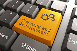 Training and Development Keyboard